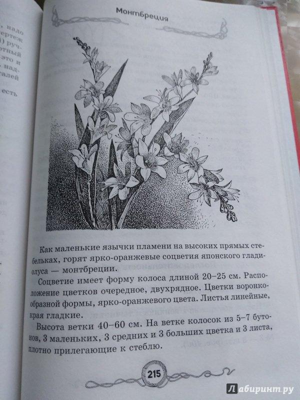 Иллюстрация 14 из 23 для Большая книга рукоделий для маленьких принцесс - Виноградова, Гликина, Уткина, Чурзина   Лабиринт - книги. Источник: Траба  Дарья Викторовна