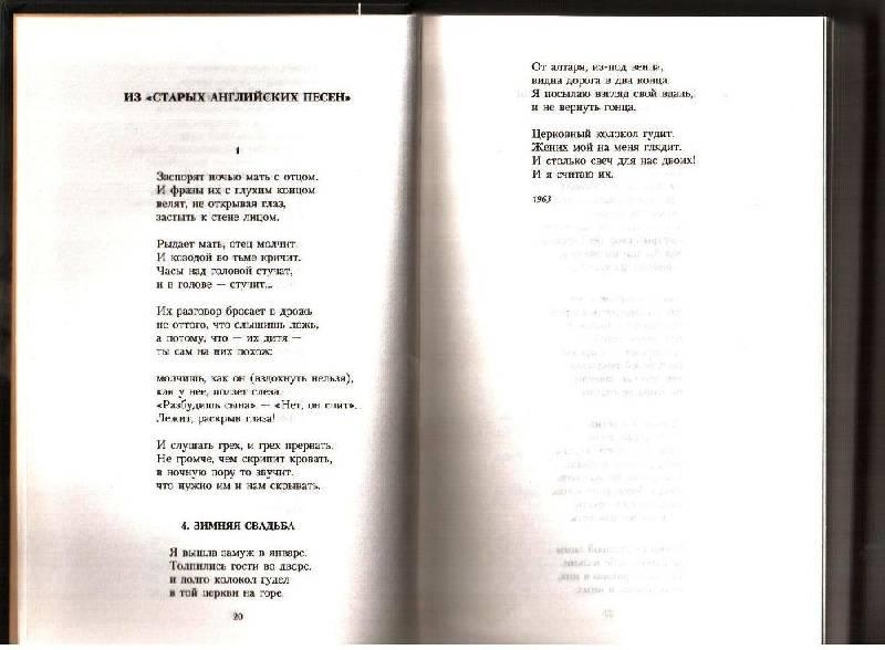 Иллюстрация 1 из 10 для Осенний крик ястреба - Иосиф Бродский | Лабиринт - книги. Источник: Владислав Женевский (Pickman)