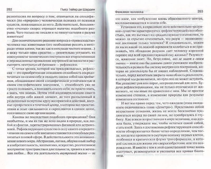 Иллюстрация 29 из 31 для Феномен человека. Божественная среда - Тейяр де Шарден   Лабиринт - книги. Источник: Матрёна