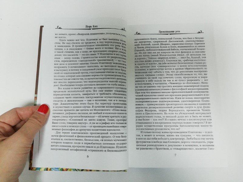 Иллюстрация 5 из 34 для Чевенгур - Андрей Платонов | Лабиринт - книги. Источник: dbyyb
