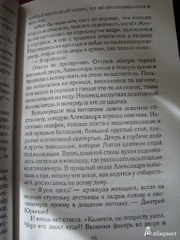 Иллюстрация 15 из 18 для Дом у последнего фонаря - Анна Малышева | Лабиринт - книги. Источник: Иринич  Лариса Павловна