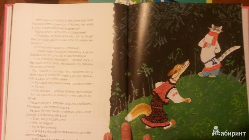 Иллюстрация 6 из 16 для Лисичка-сестричка | Лабиринт - книги. Источник: Шляжко  Наталья Александровна
