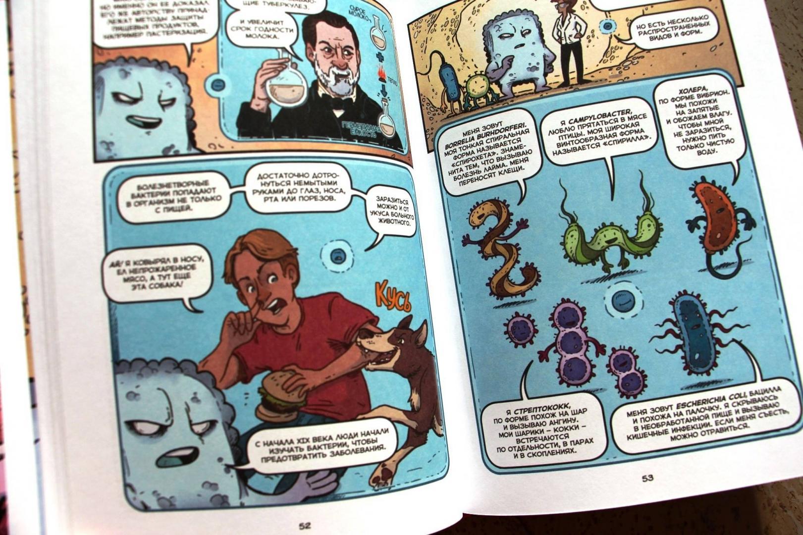 Иллюстрация 38 из 41 для Вирусы и микробы. Научный комикс - Фалинн Кох | Лабиринт - книги. Источник: Анна К.