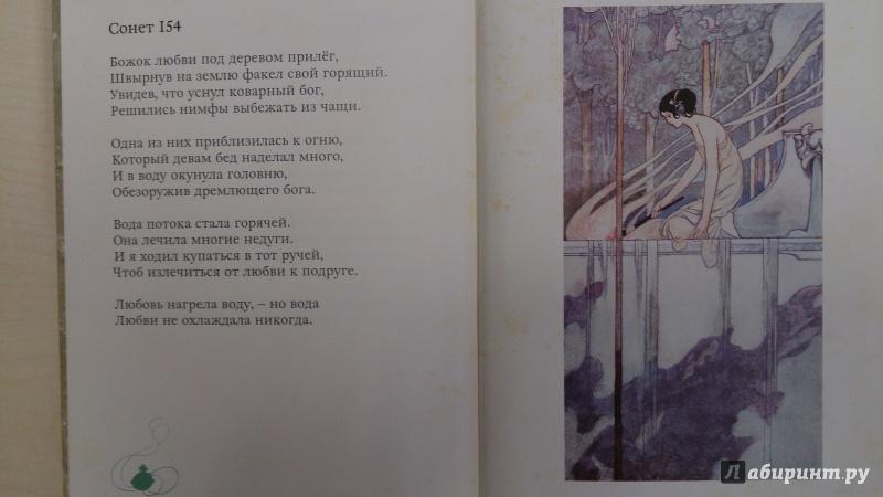 Иллюстрация 14 из 27 для Сонеты - Уильям Шекспир | Лабиринт - книги. Источник: Хвастунова Юлия