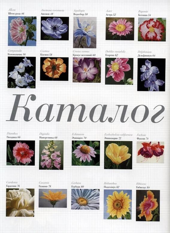 Иллюстрация 2 из 20 для Акриловая живопись. Рисуем цветы - Лекси Санделл   Лабиринт - книги. Источник: Panterra