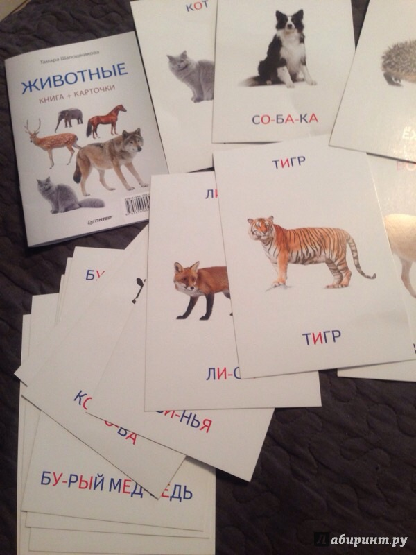 Иллюстрация 3 из 5 для Животные. Книга + карточки - Тамара Шапошникова   Лабиринт - игрушки. Источник: Ttoma