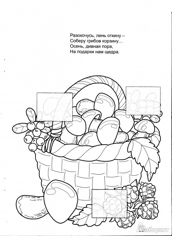 корзина с грибами раскраска картинки фоторамки