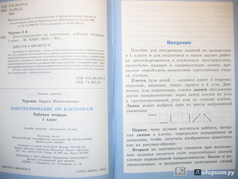 Иллюстрация 8 из 17 для Конструирование по клеточкам. 1 класс. Рабочая тетрадь. ФГОС - Лариса Чурсина | Лабиринт - книги. Источник: RoMamka