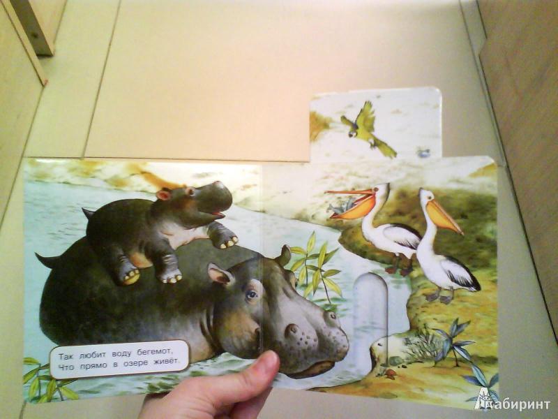 Иллюстрация 9 из 10 для Где мой домик? - Юлия Шигарова   Лабиринт - книги. Источник: Мила