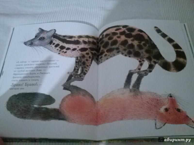 Иллюстрация 18 из 20 для Праздник в джунглях - Брайан Уайлдсмит | Лабиринт - книги. Источник: Анна
