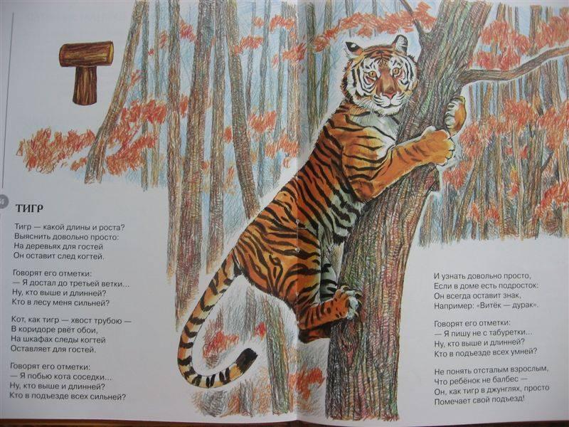 рекламе фото, амурский тигр стихи есть
