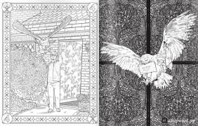 книга гарри поттер волшебная раскраска купить книгу