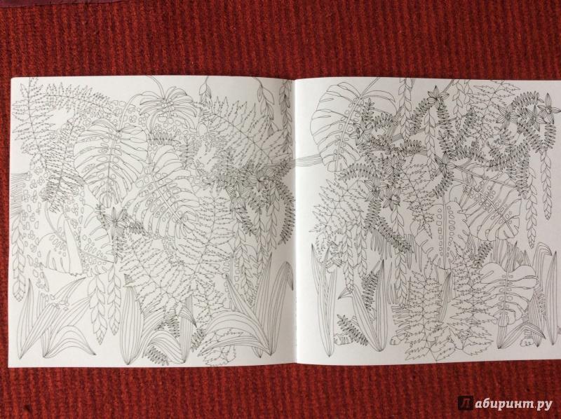 Иллюстрация 8 из 27 для Раскраска. Прятки-загадки ...