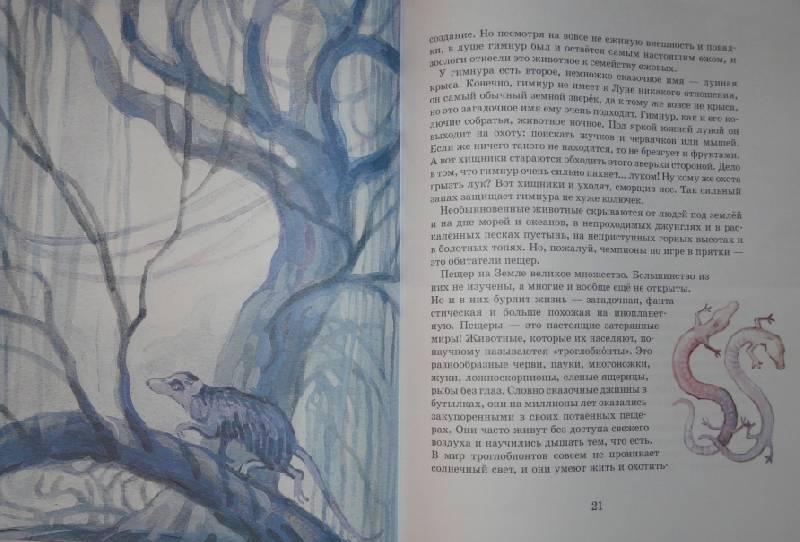 Иллюстрация 11 из 28 для Невиданные зверушки - Ольга Велейко | Лабиринт - книги. Источник: Юлика-Юла