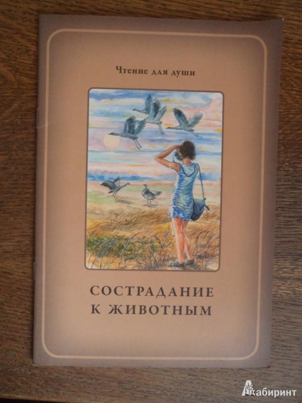 Иллюстрация 2 из 10 для Сострадание к животным - Белевцева, Жданова | Лабиринт - книги. Источник: Karfagen