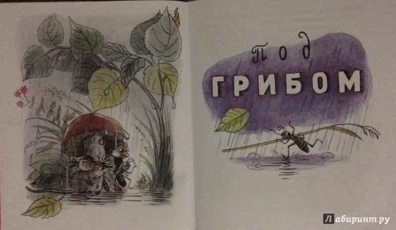 Иллюстрация 7 из 10 для Маленькие приключения - Владимир Сутеев | Лабиринт - книги. Источник: MARI