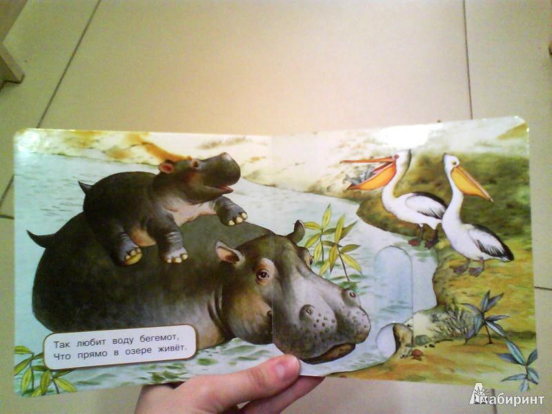 Иллюстрация 8 из 10 для Где мой домик? - Юлия Шигарова | Лабиринт - книги. Источник: Мила