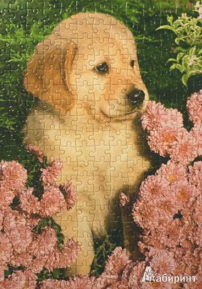 """Иллюстрация 1 из 3 для Puzzle-260 MIDI """"Маленький ретривер"""" (B-26906)   Лабиринт - игрушки. Источник: ЛиС-а"""