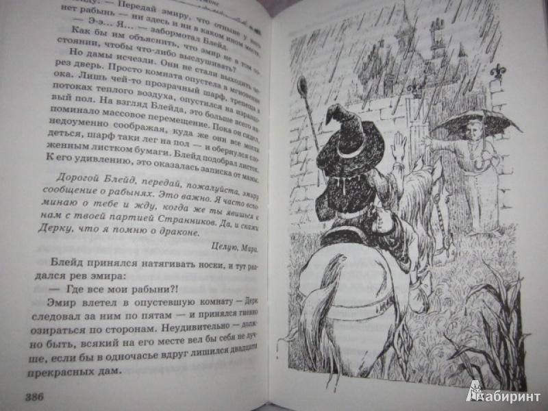 Иллюстрация 41 из 44 для Темный властелин Деркхольма - Диана Джонс | Лабиринт - книги. Источник: dragonspy