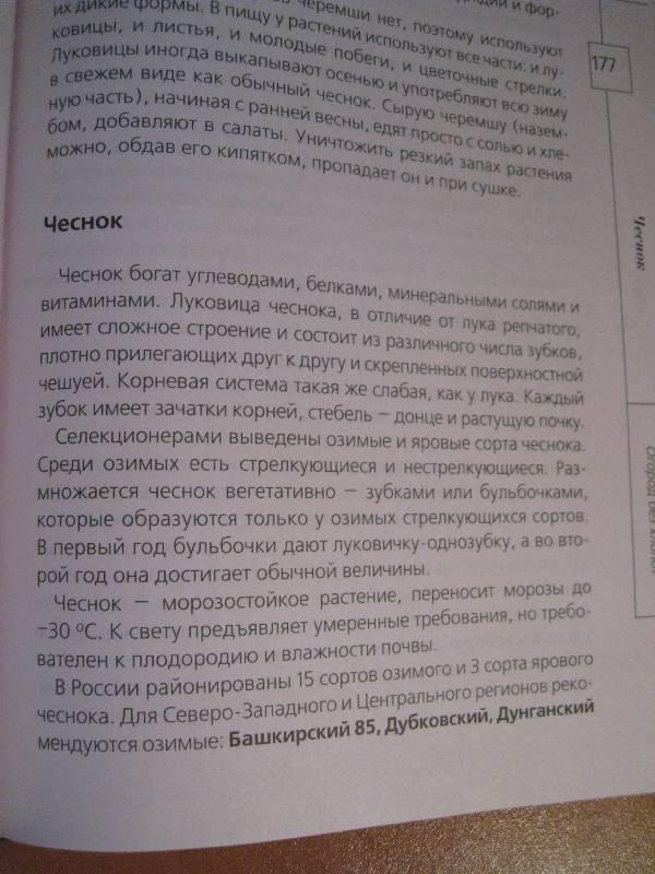 Иллюстрация 14 из 20 для Огород без хлопот - Андрей Туманов   Лабиринт - книги. Источник: Фея Нежности