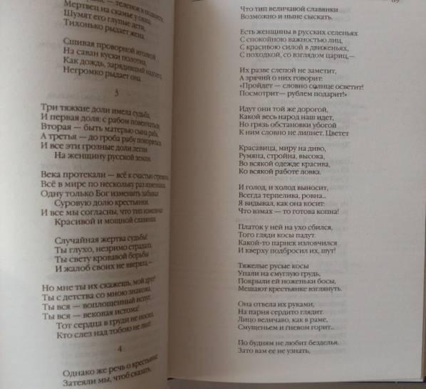 Иллюстрация 20 из 22 для Стихотворения и поэмы. Кому на Руси жить хорошо - Николай Некрасов | Лабиринт - книги. Источник: Кукина  Мария