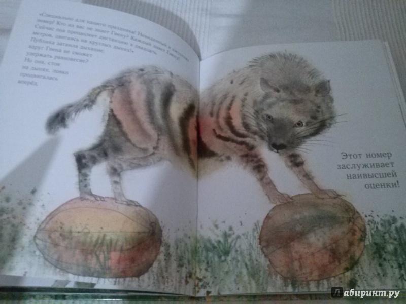 Иллюстрация 15 из 20 для Праздник в джунглях - Брайан Уайлдсмит | Лабиринт - книги. Источник: Анна