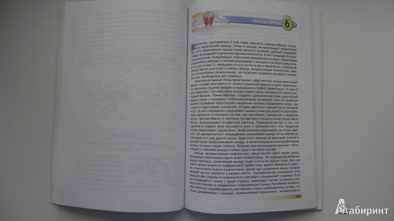 Иллюстрация 8 из 25 для Анатомия плавания - Йен Маклауд   Лабиринт - книги. Источник: Серебренникова  Наталья