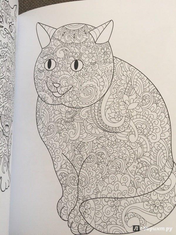 Иллюстрация 22 из 23 для Cats. Творческая раскраска ...