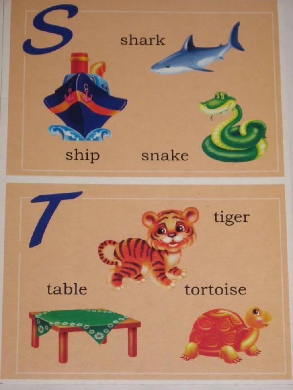 Иллюстрация 1 из 11 для Мой первый английский. Лото для малышей - Д. Золотарь | Лабиринт - игрушки. Источник: Dana-ja