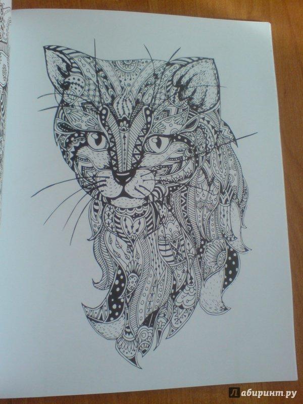 Иллюстрация 13 из 23 для Cats. Творческая раскраска ...
