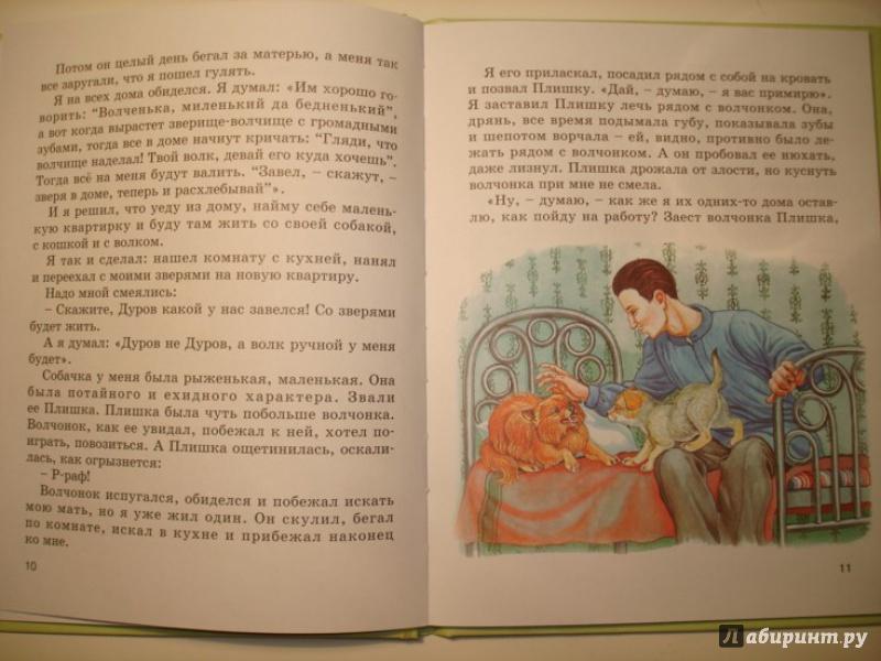 Иллюстрация 5 из 7 для Мой серый друг - Житков, Чехов | Лабиринт - книги. Источник: Сорокина  Лариса