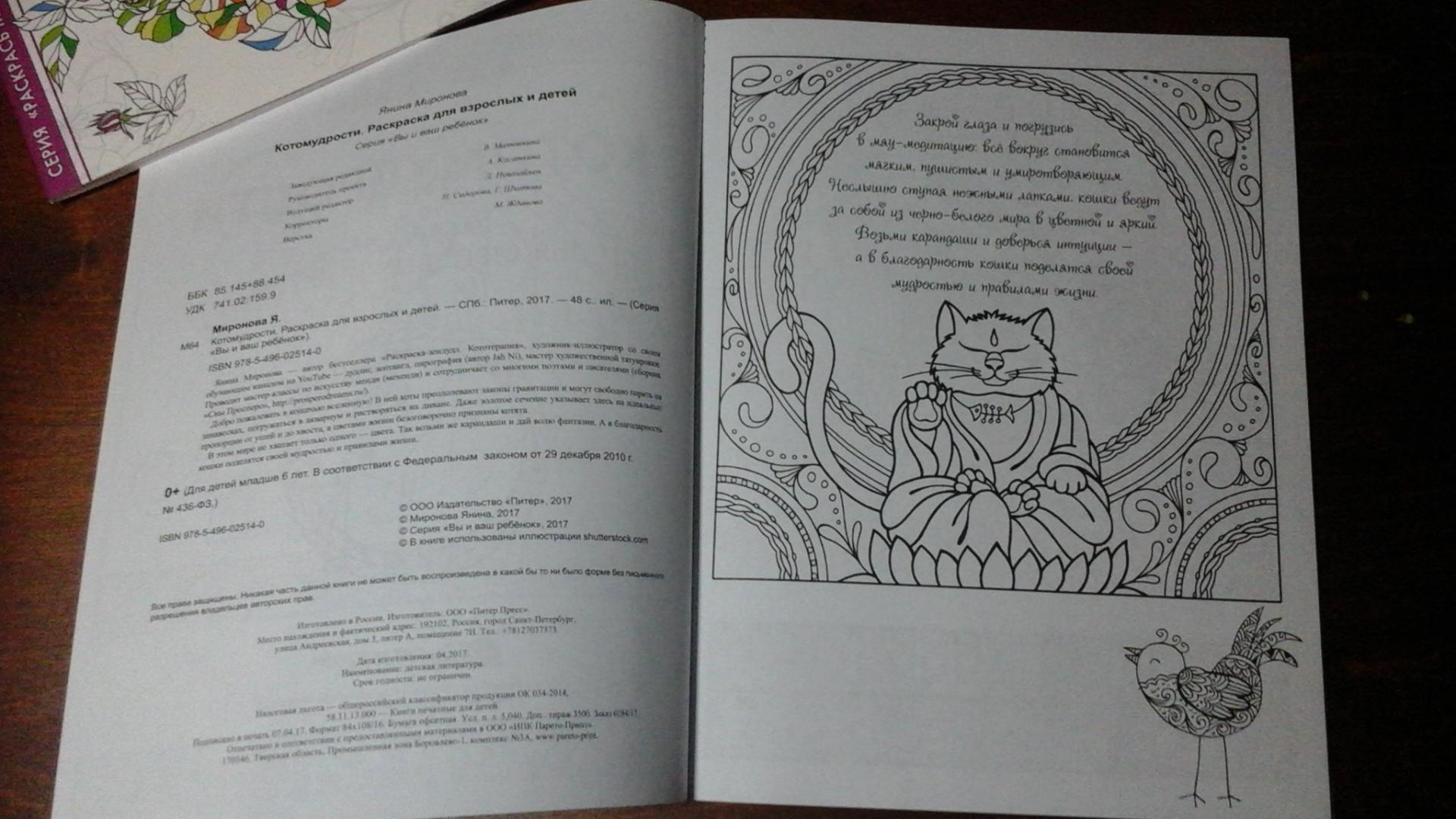 Иллюстрация 16 из 23 для Котомудрости. Раскраска для ...