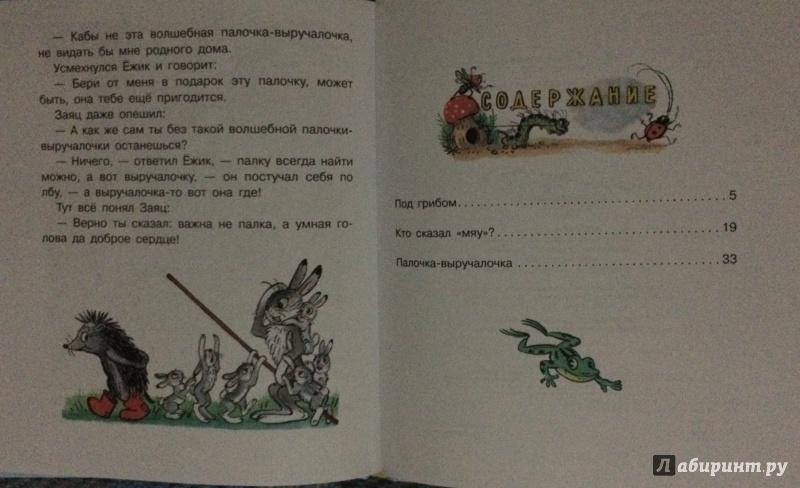 Иллюстрация 6 из 10 для Маленькие приключения - Владимир Сутеев | Лабиринт - книги. Источник: MARI
