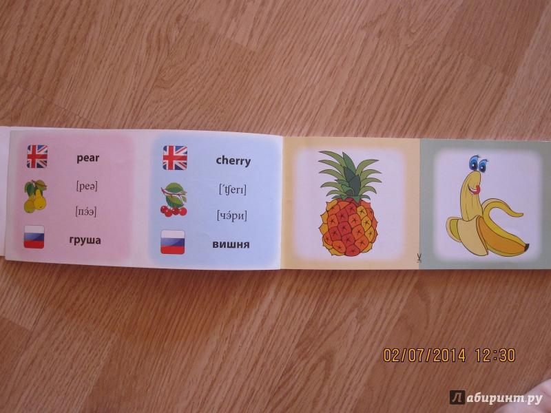 Иллюстрация 4 из 16 для Овощи. Фрукты. Коллекция карточек - Лариса Зиновьева | Лабиринт - книги. Источник: Русских  Юлия