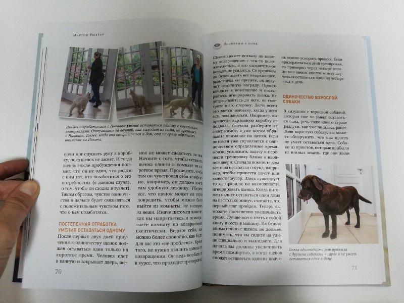 Иллюстрация 7 из 14 для Идеальная собака не выгуливает хозяина. Как воспитать собаку без вредных привычек - Мартин Рюттер | Лабиринт - книги. Источник: dbyyb