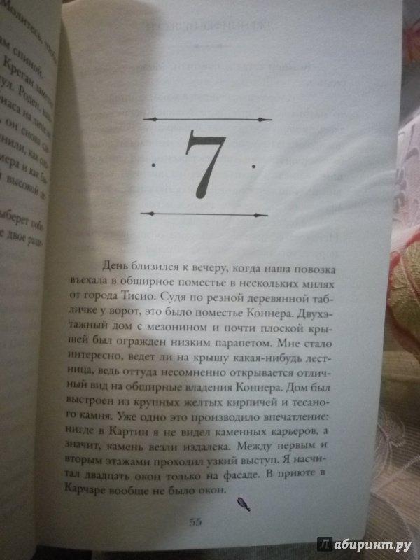 Иллюстрация 14 из 14 для Фальшивый принц - Дженнифер Нельсен   Лабиринт - книги. Источник: Сафиулина  Юлия