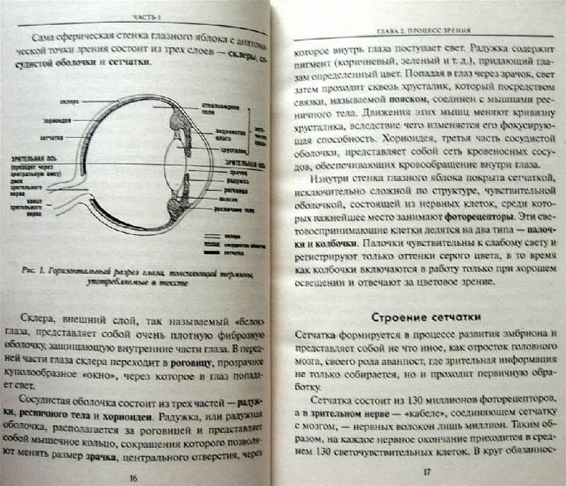 Иллюстрация 9 из 15 для Улучшение зрения без очков по методу Бейтса - Джонатан Барнс | Лабиринт - книги. Источник: Rocio